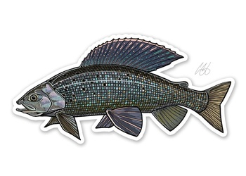 Grayling Sticker - Casey Underwood
