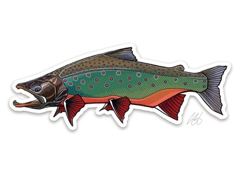 Arctic Char Sticker - Casey Underwood