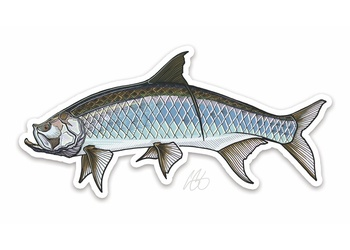 Tarpon Sticker - Casey Underwood