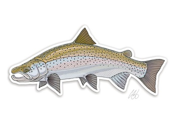 Atlantic Salmon Sticker - Casey Underwood