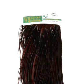 Whiting Herbert Miner Dry Fly Hackle Pro Grade Coachman Brown