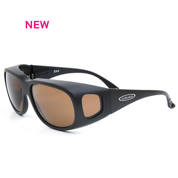 Vision 2X4 Sunglasses Brown