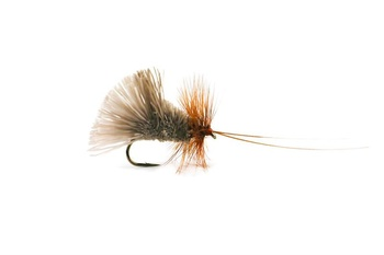 Goddards Caddis Öring # 10