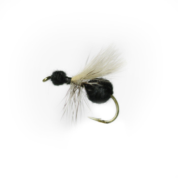Cdc Ant Black # 12