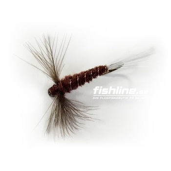 CDC Brown Spinner strl 14
