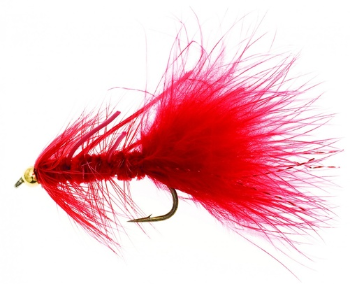Dog Nobbler Flou Red Kamasan B170 # 4