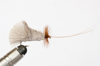 Goddard Caddis Streamer stl 8